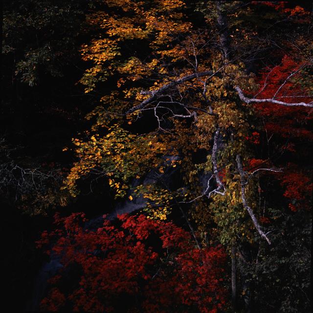 2001秋