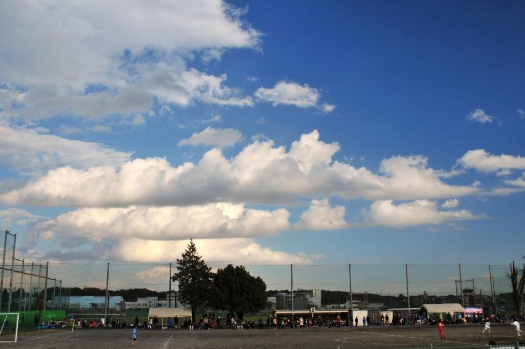 武蔵野公園運動場PL-24-1.8