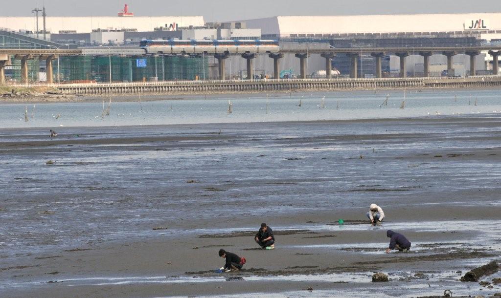 羽田・多摩川河口 1