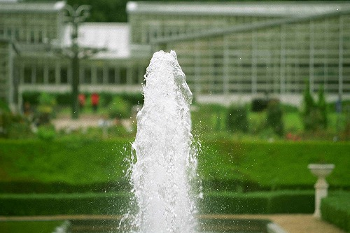 神代植物公園の噴水
