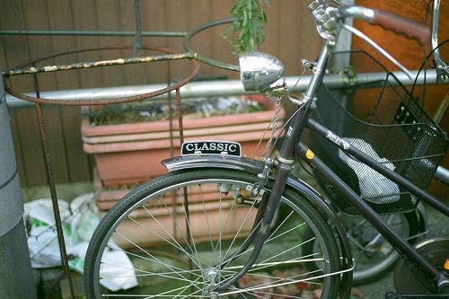 娘が撮影した自転車