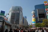 【渋谷で】