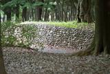 代々木公園 15