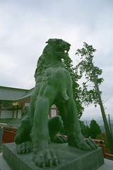 2007年11月17日 御岳 8