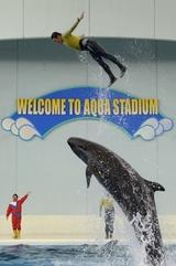 鯨のジャンプ